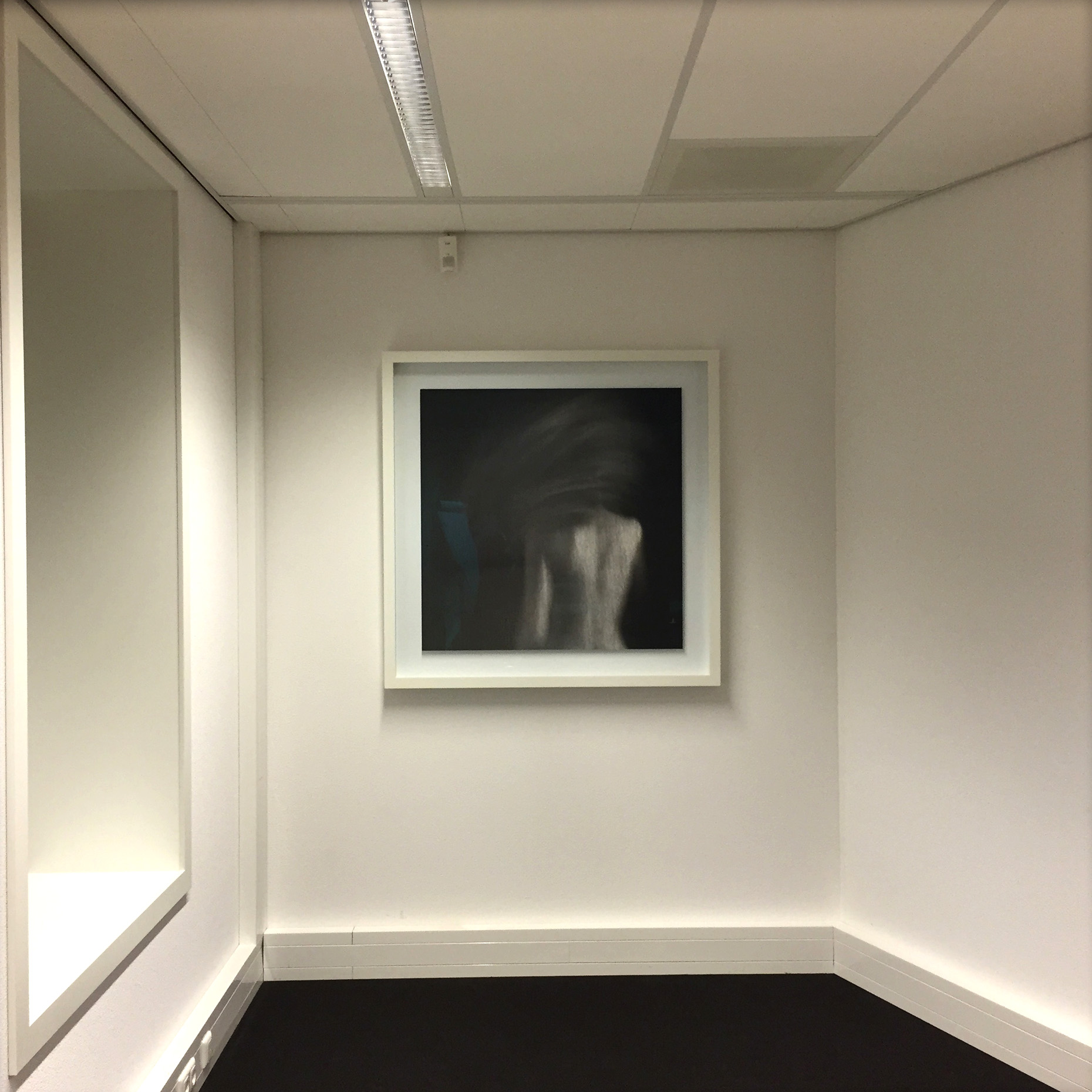 Framed Dione in Interior